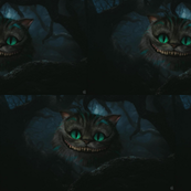 the cat of sheshire