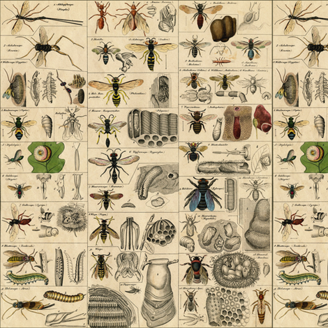 I Am Bugging Out In Historic Proportions! ~ Small fabric by peacoquettedesigns on Spoonflower - custom fabric