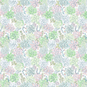 Succulents_TILE