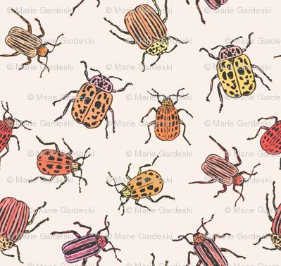 Pretty Beetles   Peach