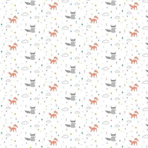 patroon-racoon-vos