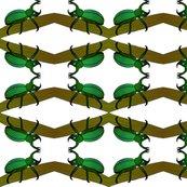 Rrrhino_beetle_shop_thumb