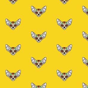 Yellow Sugar Skull Sphynx Cat