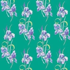 green & violet hd