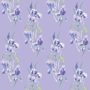 lilac & violet half drop