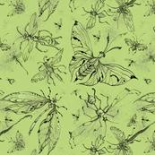 nightbug_pale_green_
