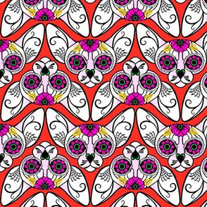 Red Background Sugar Skull Sphynx Cat CHEVRONS