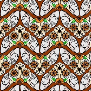 Brown Sugar Skull Sphynx CHEVRONS