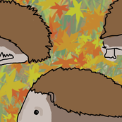 Hedgehog Autumn