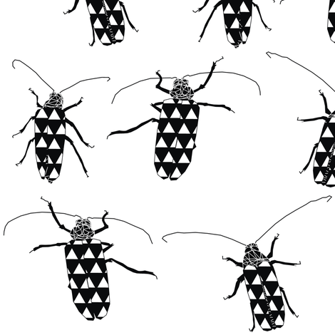 Huhu Black n White Beetles