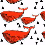 orangewhale