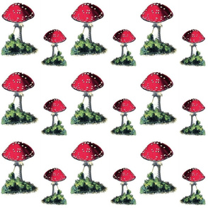 VINTAGE MUSHROOMS