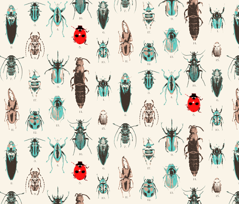 Beetle Collection fabric by vickythorndale on Spoonflower - custom fabric