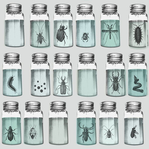 bottles_beetles