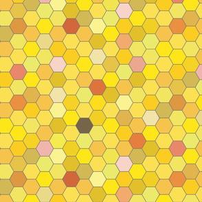 HoneyComb2014