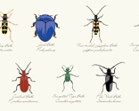 Rrscientific_beetle_fabric_design_thumb