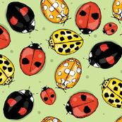 Luscious_Ladybirds