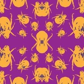 Beetle Pop