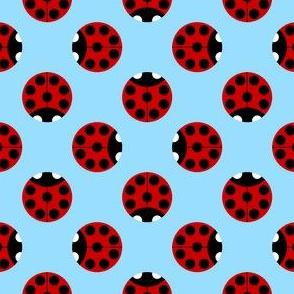 7-spot ladybird polkadot