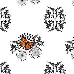 butterfly_edge