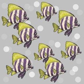 Fish 'n' Dots
