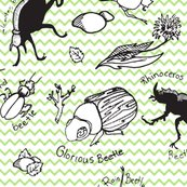 Rrbeetle_sheets_shop_thumb