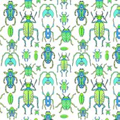 Rbeetles_shop_thumb