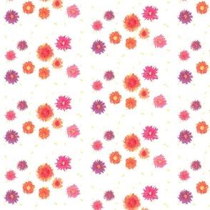 Spring Filed in White