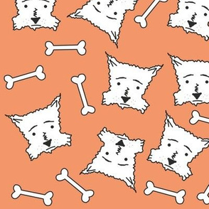 terrier_apricot