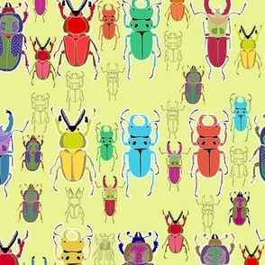 Beetle Brights