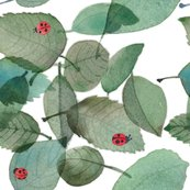 Rlarger_ladybugwatercolor2_shop_thumb