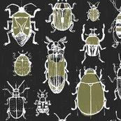 Rrrrfriztin_beetles_.ai_shop_thumb