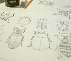 Rrrrrfriztin_beetles_.ai_comment_488453_thumb