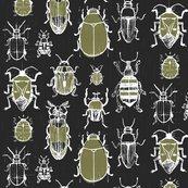 Rrrrrfriztin_beetles_.ai_shop_thumb