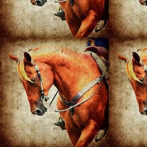 Sorrel western horse grunge