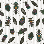 beetles_pinstripe