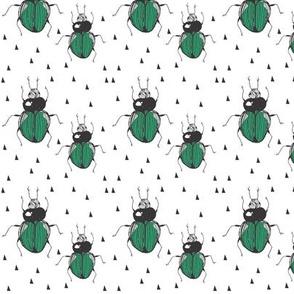 beetle chevron - elvelyckan