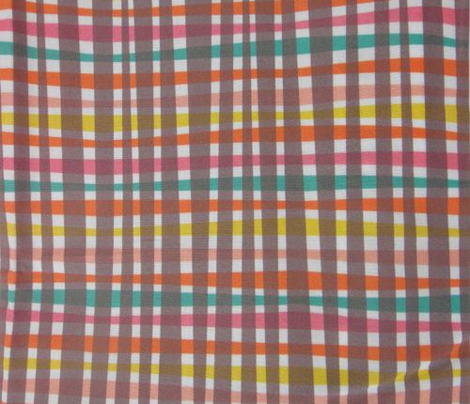 Chocolate Rainbow Gingham