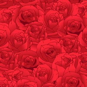 RosesA2014