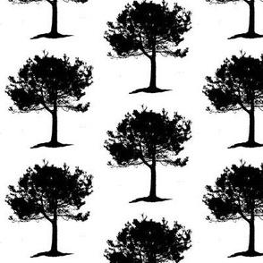 Brenda's_Tree