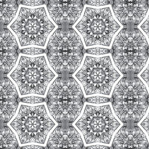 black and white kaleidoscope
