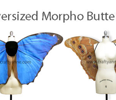 Oversized Morpho Butterfly Wings Part 1