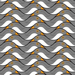 penguins glide
