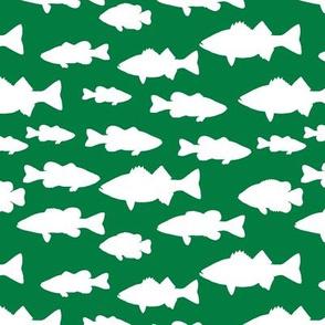 fish // green