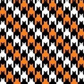 Catstooth Halloween