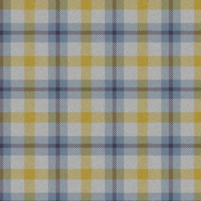 Autumn Plaid 5