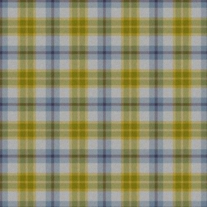Autumn Plaid 6