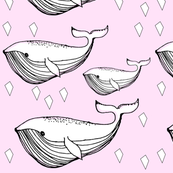 pinkwhale