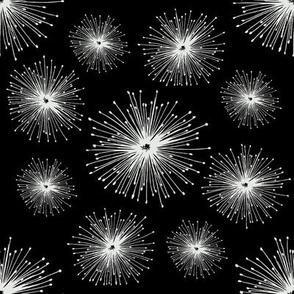 Graphic starburst