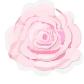 A Shabby Chic rose soft